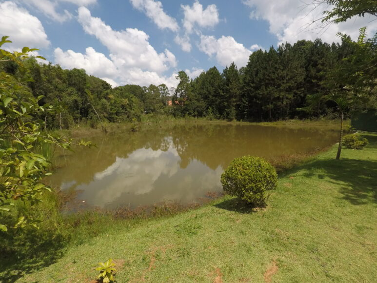 Jardim San Ressore - Galeria de Fotos